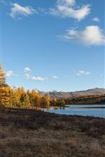 Autumn, lake, trees, Altay