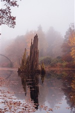 Preview iPhone wallpaper Autumn, stone bridge, river, trees, fog, Germany