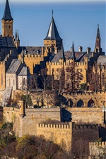 Preview iPhone wallpaper Baden-Wurttemberg, Germany, trees, castle