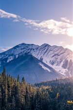 Preview iPhone wallpaper Banff National Park, Canada, mountains, forest, trees, sunset