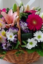Preview iPhone wallpaper Basket, colorful flowers, chrysanthemum, gerbera, lily
