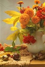 iPhone fondos de pantalla Arándano, bayas, flores