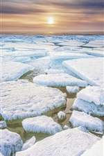 Friesland, North of Netherlands, ice, frost, sea, sunset