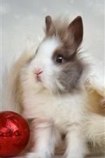 Preview iPhone wallpaper Furry rabbit, hat, ball