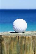 Preview iPhone wallpaper Golf ball, stump