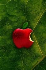 Folha verde, maçã vermelha, gotas de água, logotipo