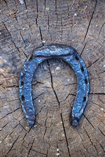 Preview iPhone wallpaper Horseshoe, stump