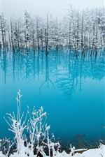 iPhone fondos de pantalla Japón, Hokkaido, estanque azul, árboles, nieve, invierno