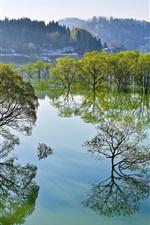 Preview iPhone wallpaper Japan, Yamagata, lake, trees, water reflection, winter