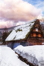 Preview iPhone wallpaper Japan, village, house, thick snow, winter, trees, clouds