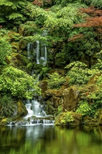 Preview iPhone wallpaper Japanese Gardens, trees, waterfall, Oregon, Portland, USA