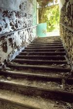 Ladder, gate, ruins