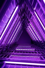 Ladder, purple lights