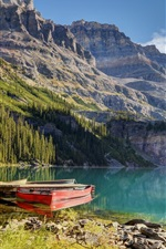 Preview iPhone wallpaper Lake, boat, pier, mountain, trees