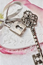 Preview iPhone wallpaper Pink rose, snow, key, lock