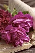 iPhone壁紙のプレビュー 紫の牡丹、本