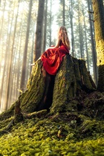 Preview iPhone wallpaper Red skirt girl sit on stump, forest