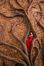 Red skirt girl sleep on ground, autumn, leaves, tree roots
