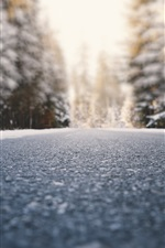 Road, ground, trees, snow, winter, blurry