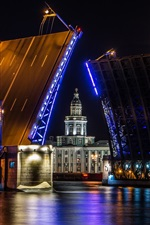 Preview iPhone wallpaper Saint Petersburg, bridge, night, lights, Russia