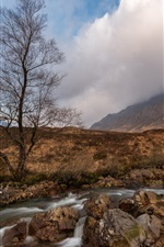 Preview iPhone wallpaper Scotland, trees, stream, mountain, clouds