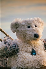 Preview iPhone wallpaper Teddy bear, ropes, Titanic