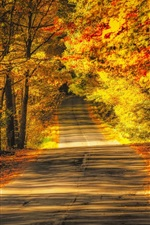 Preview iPhone wallpaper Trees, road, autumn, yellow leaves