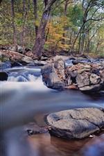 iPhone обои Деревья, камни, ручей, вода