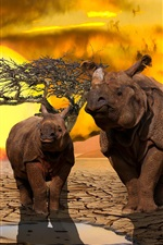 Preview iPhone wallpaper Two rhinos, dry ground, tree, sunset