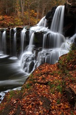 Preview iPhone wallpaper West Virginia, trees, stream, waterfall, autumn, USA