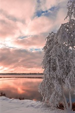 Preview iPhone wallpaper Winter, snow, lake, trees, clouds, dusk
