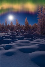 Preview iPhone wallpaper Winter, snow, night, trees, northern lights