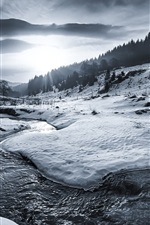 Preview iPhone wallpaper Winter, snow, river, trees, sun rays, black and white picture