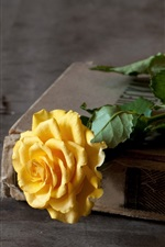 Preview iPhone wallpaper Yellow rose, old book