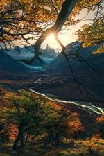 Осень, деревья, солнечные лучи, горы, река