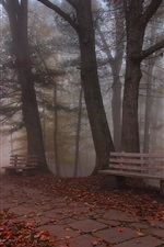 Preview iPhone wallpaper Bench, fog, forest, trees, park, autumn
