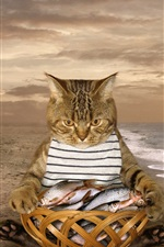 Preview iPhone wallpaper Cat and basket of fish, beach, sea, funny animal