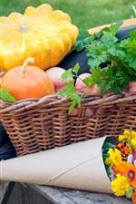 Cat, vegetables, flowers, basket