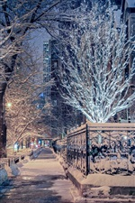 Preview iPhone wallpaper Chicago, Illinois, winter, snow, trees, street, city night, USA