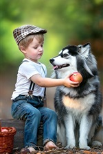 Preview iPhone wallpaper Child boy and husky dog