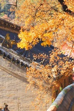Preview iPhone wallpaper China, house, trees, autumn