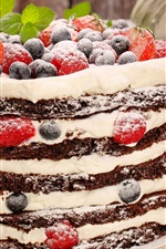 Preview iPhone wallpaper Chocolate and cream cake, powdered sugar, blueberry, strawberry