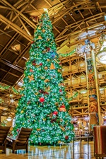 Preview iPhone wallpaper Christmas tree, interior, Disneyland