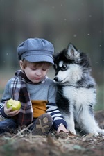 Preview iPhone wallpaper Cute child boy and dog, green apple, snow