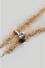 Preview iPhone wallpaper Diamond ring, spikelets