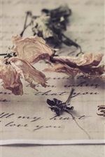Dried flowers, letter