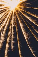 Fogos de artifício, faíscas, fundo preto