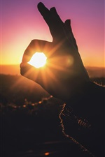 Preview iPhone wallpaper Hand, finger, rabbit shaped, sun rays