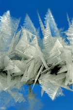 Preview iPhone wallpaper Ice crystal macro photography