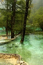 Preview iPhone wallpaper Jiuzhaigou National Park, pond, water, trees, fog, China